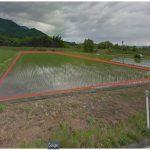 売 農地 (994.3坪)*建物の建築は出来ません。