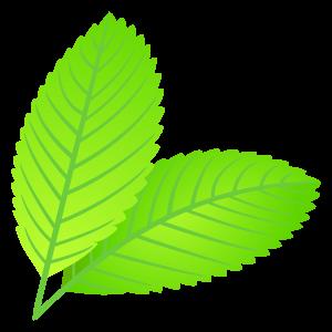 m_f_leaf1310
